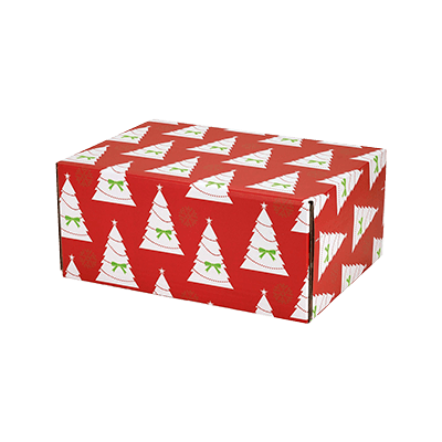 Custom Decorative Mailer Boxes 2
