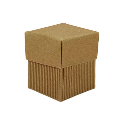 Custom Gift Corrugated Boxes 4